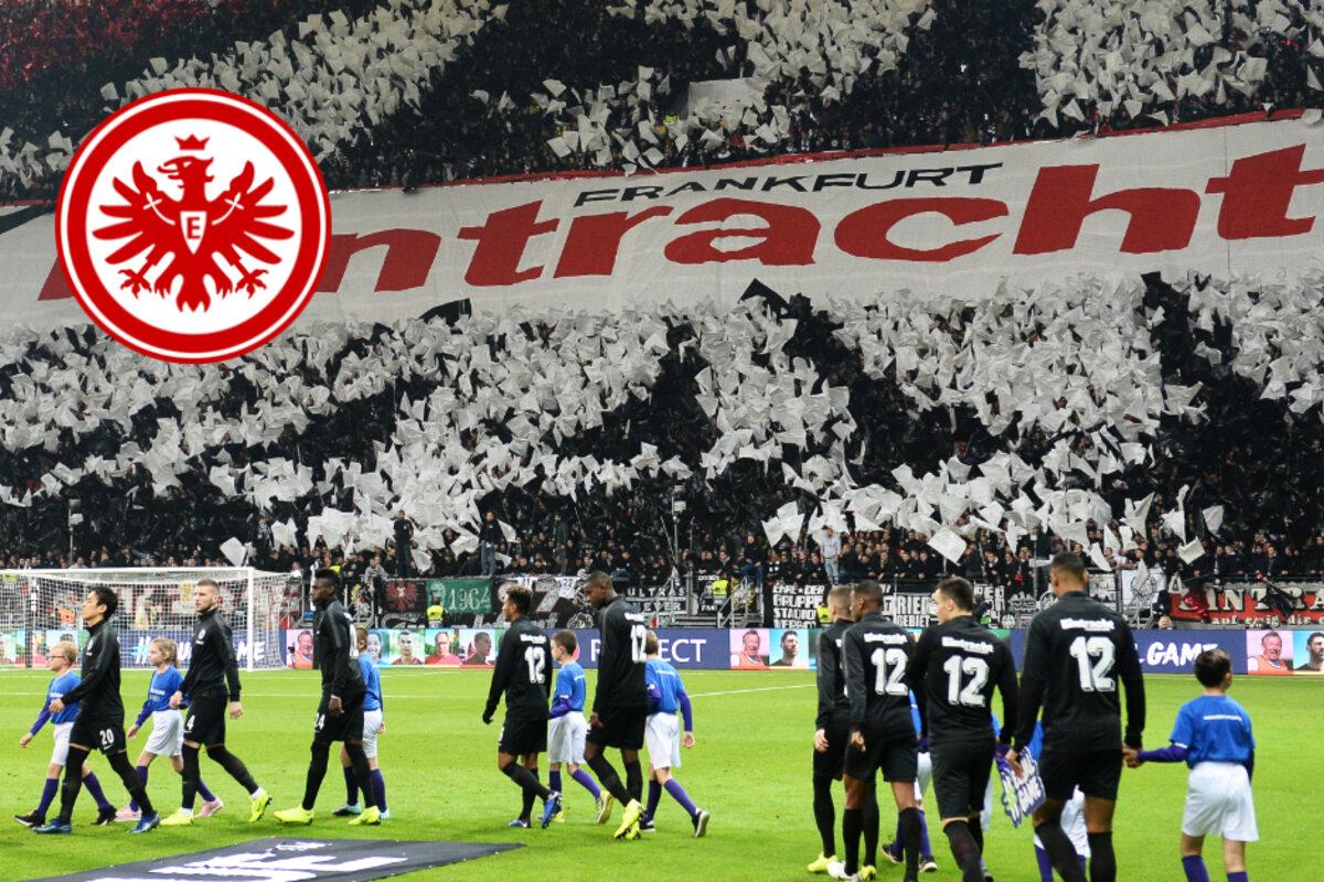 Corona Fälle Frankfurt