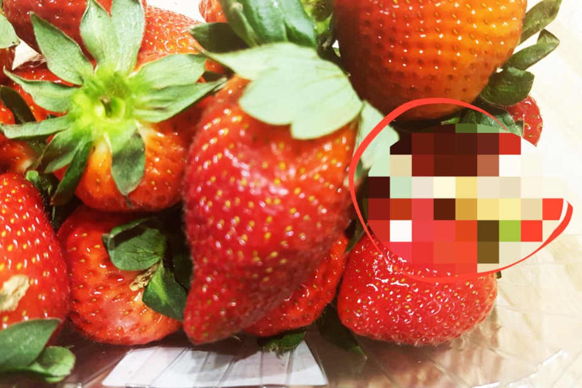 Erdbeeren Aldi