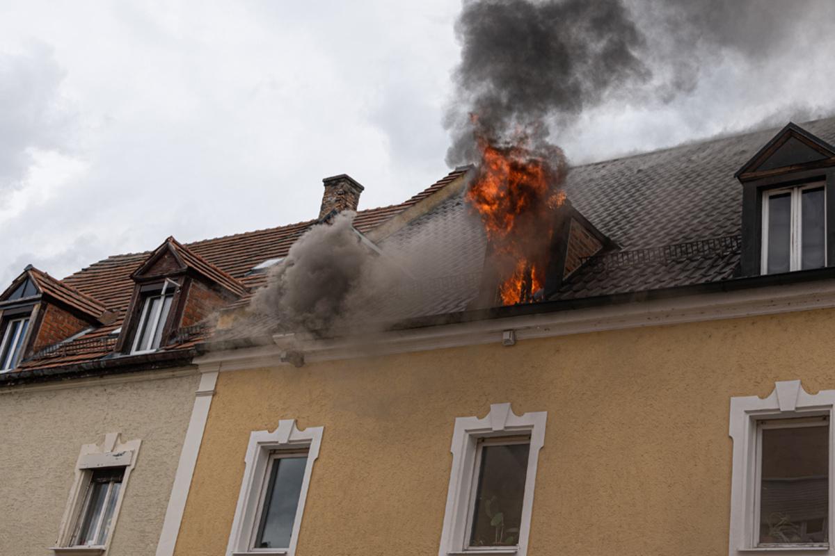 Wohnung in Flammen: Familie flieht in letzter Sekunde, Katzen verenden