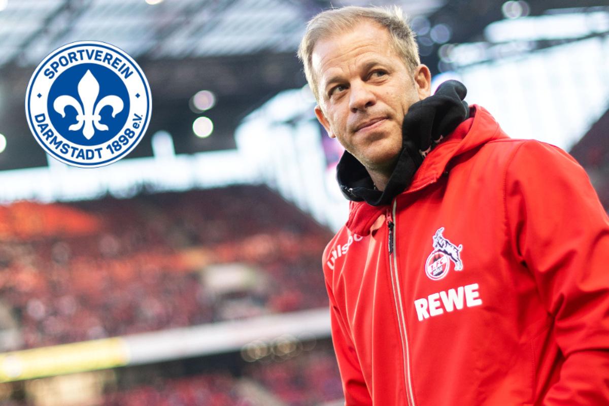 Trainer Sv Darmstadt