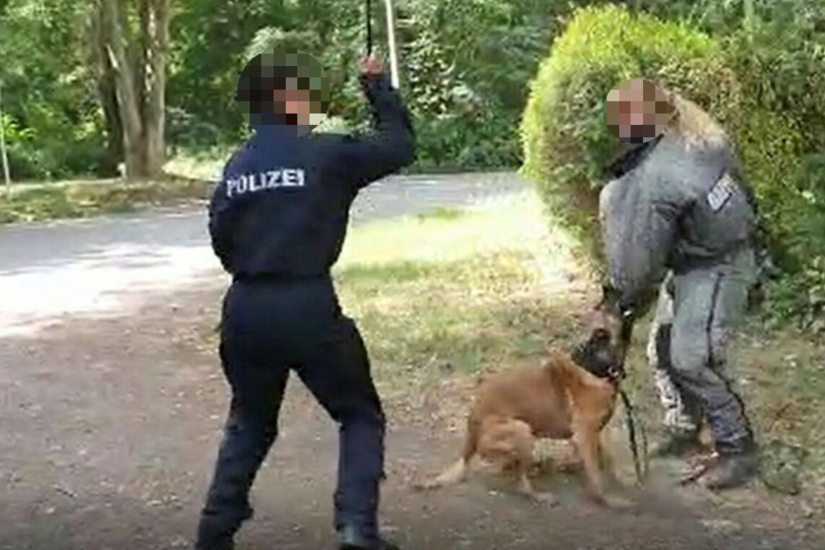 www.tag24.de