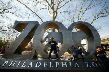 Philadelphia Zoo rolls out Covid-19 vaccination campaign for its animals
