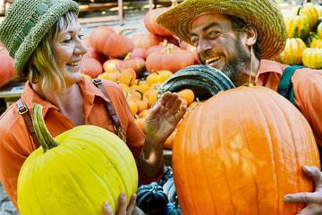 Farbenfrohe Kürbis-Leidenschaft in Sachsen: Immer im Herbst sieht diese Familie orange!