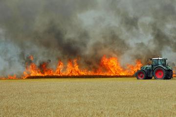 Großbrand auf Feld in der Nähe der A19! Verkehr gestoppt