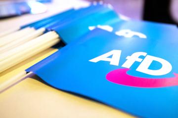 """AfD unterstützt umstrittenes Volksbegehren """"Landtag abberufen"""""""