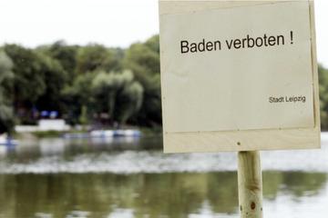 Leipzig: Giftige Blaualgen: Stadt warnt vor Kontakt mit Wasser des Auensees