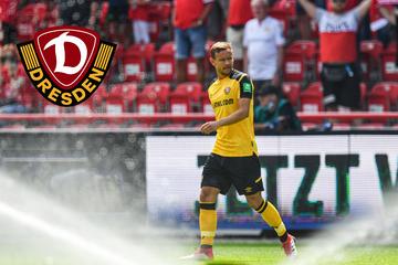 """Dynamo ist Löwes letzter Verein: """"Möchte kein Maskottchen sein"""""""