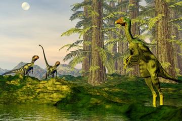 Forscher machen Sensationsfund: Dieser Dinosaurier könnte bald geklont werden!
