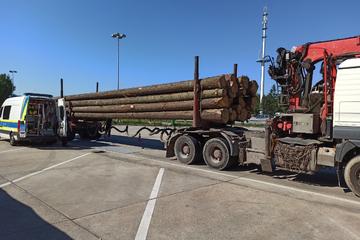 Zu lang, zu schwer, verboten: Polizei zieht Holzlaster aus dem Verkehr