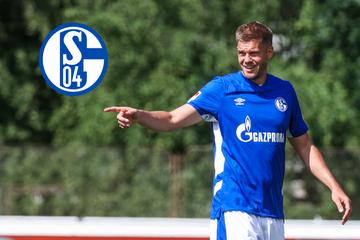 Zweitliga-Top-Favorit? Schalke 04 rüstet mit Terodde, Bülter und Latza mächtig auf!