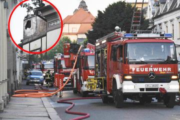 Balkon steht in Flammen: Hund warnt Herrchen!