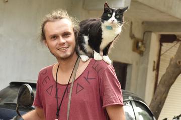 Moglis kuriose Reise: Katze führt abenteuerliches Leben