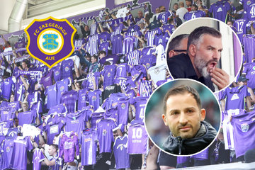 Erzgebirge Aue: Stipic will, darf aber nicht und Tedesco ist Wunsch-Trainer der Fans