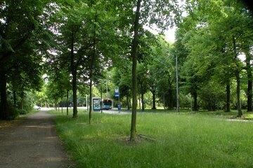 Leipzig: Noch ein sexueller Übergriff in Leipzig! Täter begrapscht junge Frau an Parkbank