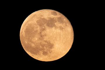"""Heute """"Supermond"""": Bekommen wir den größten Mond des Jahres zu sehen?"""