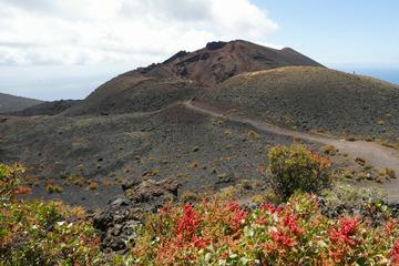 Tausende Beben auf Urlaubsinsel! Vulkanausbruch befürchtet, Evakuierung vorbereitet
