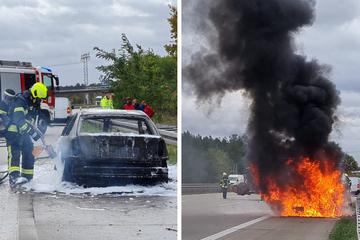 Berlin: Auto brennt auf der A115: Starker Wind entfacht Feuer immer wieder