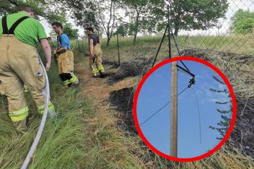 Stromleitung gerissen: Feuer bricht auf Streuobstwiese aus