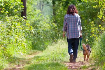 Forschungen bestätigen: So gut ist Zeit in der Natur für die Gesundheit!
