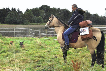 Mit dem Pferd bis nach China! Verrückte Reise soll viele Leben retten