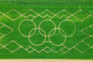 Olympischer Kornkreis: Landwirtsfamilie lädt zum Verirren ein