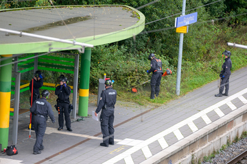23-Jährige in Flüchtlingsunterkunft ermordet: Polizei findet Handys