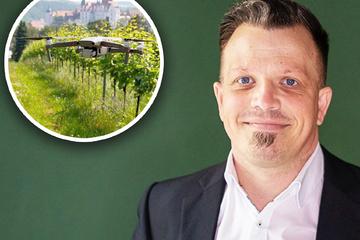 Forscher digitalisieren den Weinbau in Sachsen