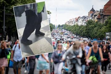 Berlin: Netz-Lacher: Querdenker lernen Berliner Schnauze kennen!
