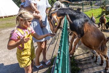 Tierische Vielfalt aus dem wilden Westen im Tierpark Limbach-Oberfrohna