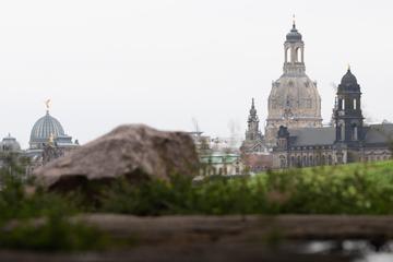 Dresden: Coronavirus in Dresden: 50 Neuinfektionen, ein weiterer Todesfall