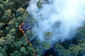 Neun Hektar Waldbrandfläche! Einsatzleitung bespricht A14-Sperrung
