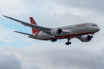 Wildes Tier im Flugzeug: Boeing zur Notlandung gezwungen
