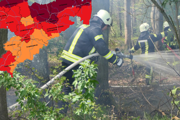 30 Grad und mehr! In Sachsen steigt die Waldbrandgefahr