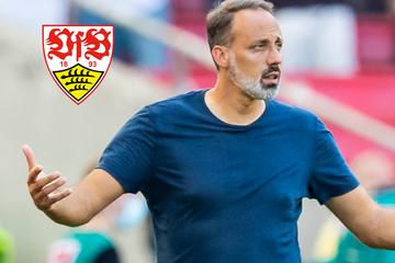 """""""Was wollen wir?"""": VfB-Coach Matarazzo nimmt ungewohnt scharf sein Team in die Pflicht"""