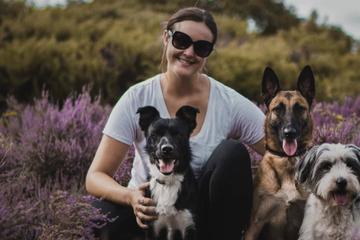 Hundetrainerin verrät: Diesen Fehler dürft Ihr nie bei Eurem Welpen machen!