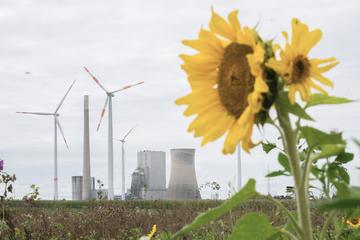 """""""Die Zeit drängt!"""" Verein fordert mehr Tempo bei der Energiewende"""