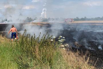 Leipzig: Feuerwehr-Einsatz im Landkreis Leipzig: Feld steht in Flammen
