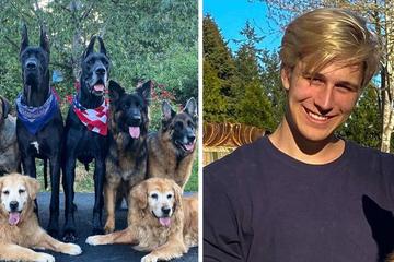 Herrchen lässt seine acht Hunde zum Spielen raus: Deren Reaktion ist saukomisch!