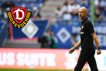 """Dynamo-Coach Schmidt freut sich über gelungenen Start: """"Die vier Punkte sind mir sehr viel wert!"""""""