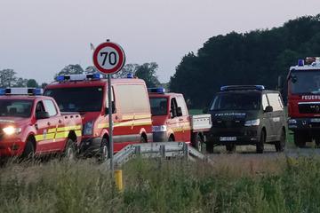 Gefährliches Gebiet: Großeinsatz wegen Waldbrand bei Torgau