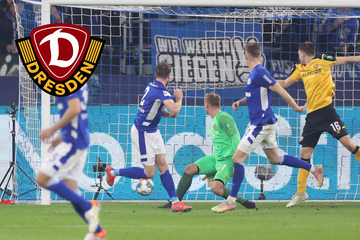Couragierter Auftritt, aber Dynamo verliert auf Schalke deutlich