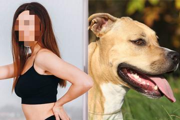 Mann bittet Freundin, Sex mit Hund zu haben: Was dann passiert, verändert alles!