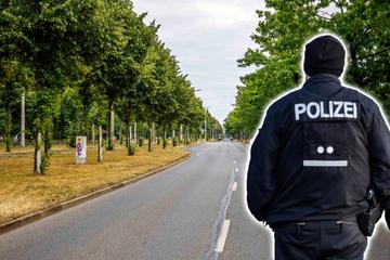 Dresden: Frau sexuell belästigt, versuchter Handtaschenraub: Polizei ermittelt zu Vorfällen auf der Stübelallee