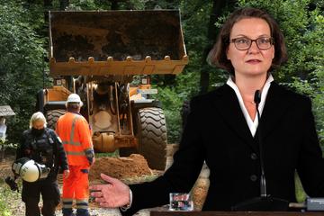 Macht-Missbrauch? Grüne schießen nach Urteil um Hambacher Forst gegen Ministerin
