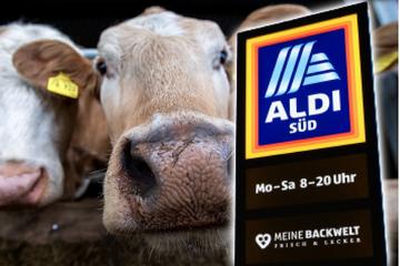 Preisdrückerei und Scheinheiligkeit: Bauernverband schießt gegen Aldi!
