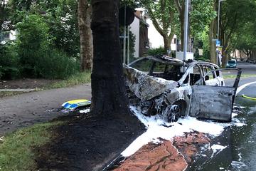 Streifenwagen prallt gegen Baum und geht in Flammen auf: Passanten retten zwei Polizisten!