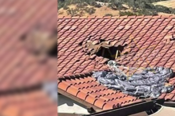 Look out below! Paratrooper crashes through a house and miraculously survives