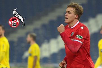 Durchbruch beim 1. FC Köln? Nächster Neuzugang soll noch diese Woche kommen