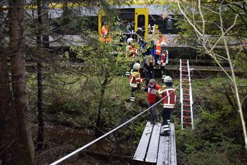 Baum fällt auf Oberleitung: Feuerwehr evakuiert Zug