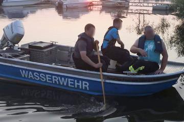 Tragischer Fund: Vermisster 85-Jähriger tot aus Elbe geborgen